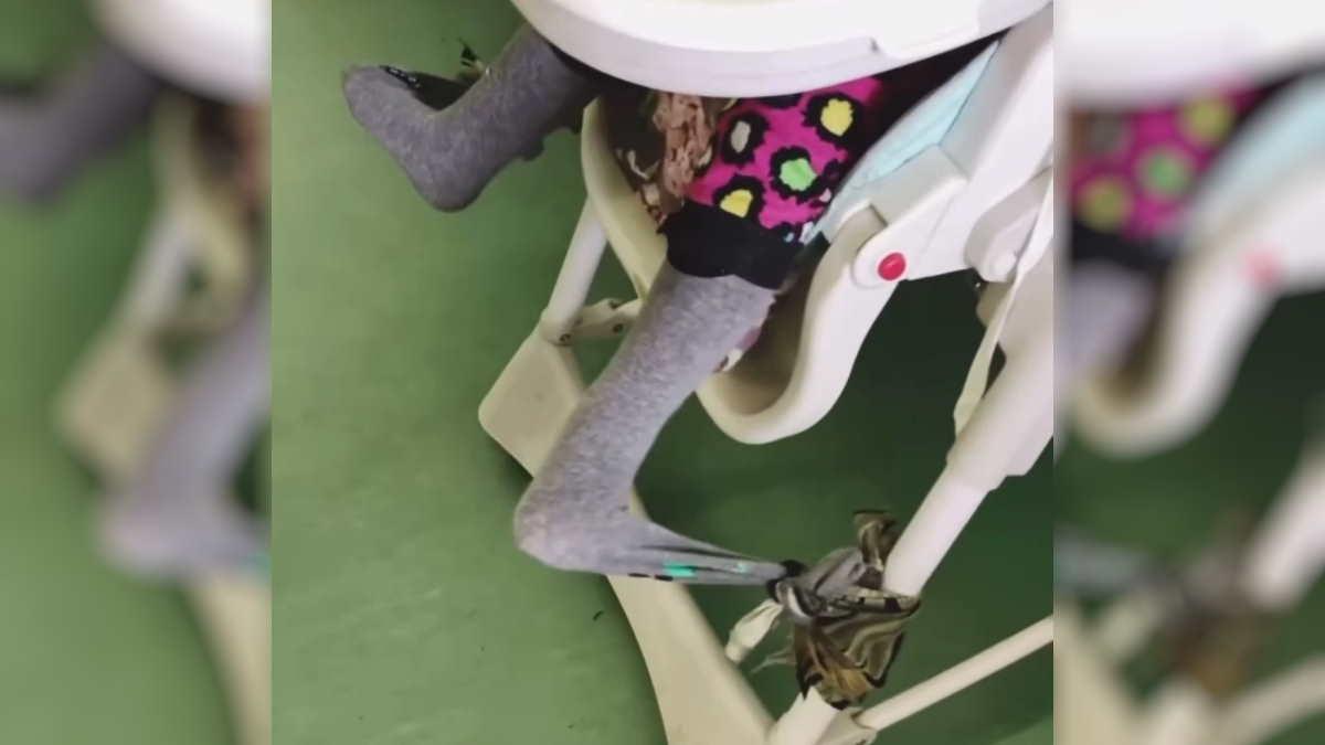Сироту привязали к стулу