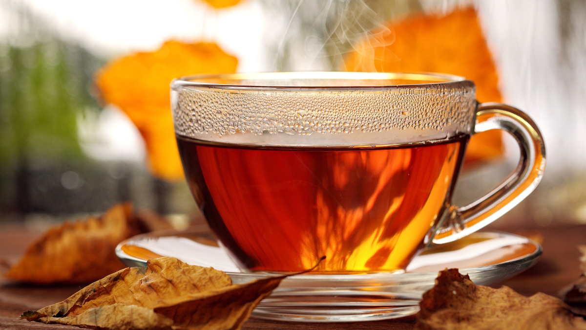 чай осень