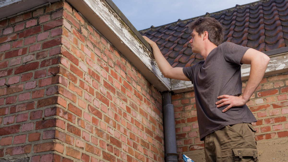 обследование крыши