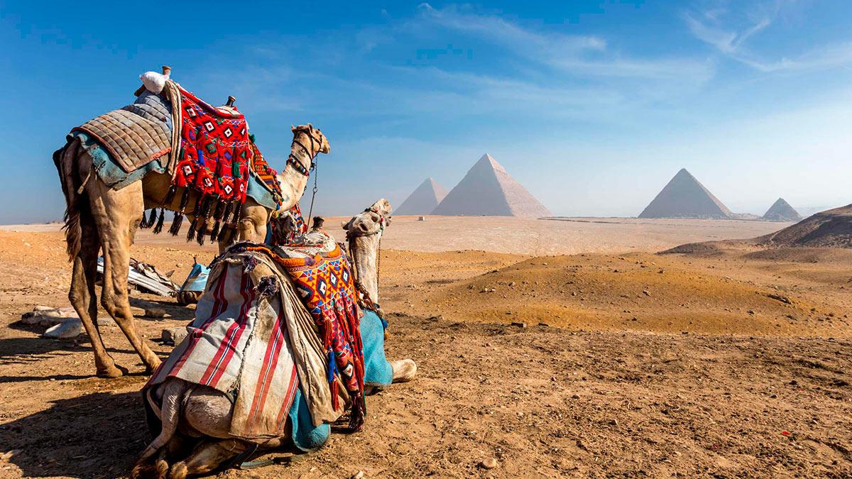Оптимальная стоимость поездки в Египет