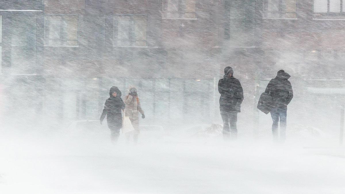Ожидается снежная буря