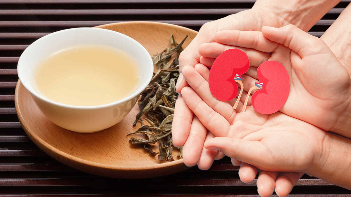 белый чай полезен для почек