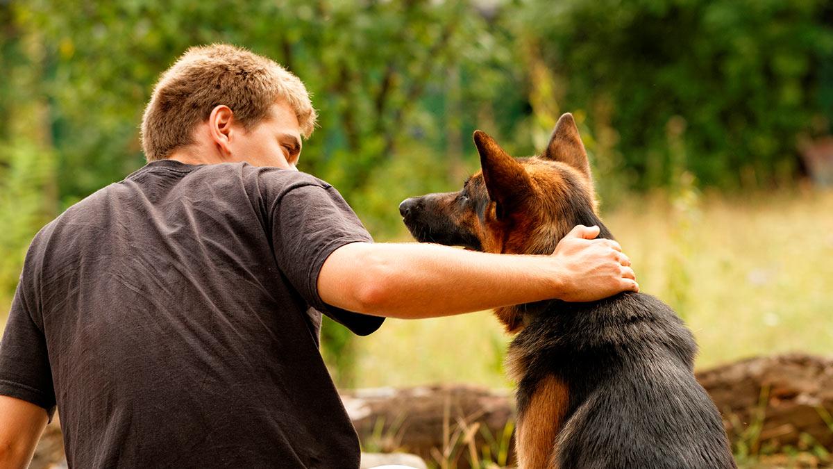 парень разговаривает с собакой