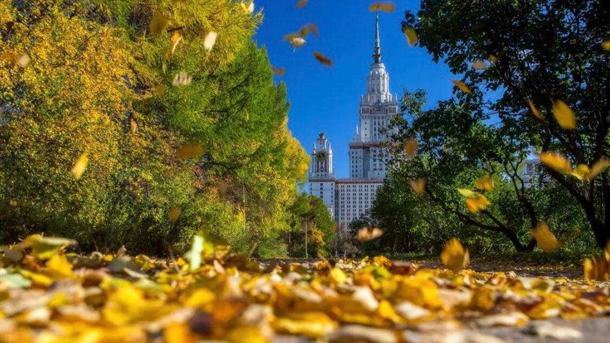 парк осень Москва