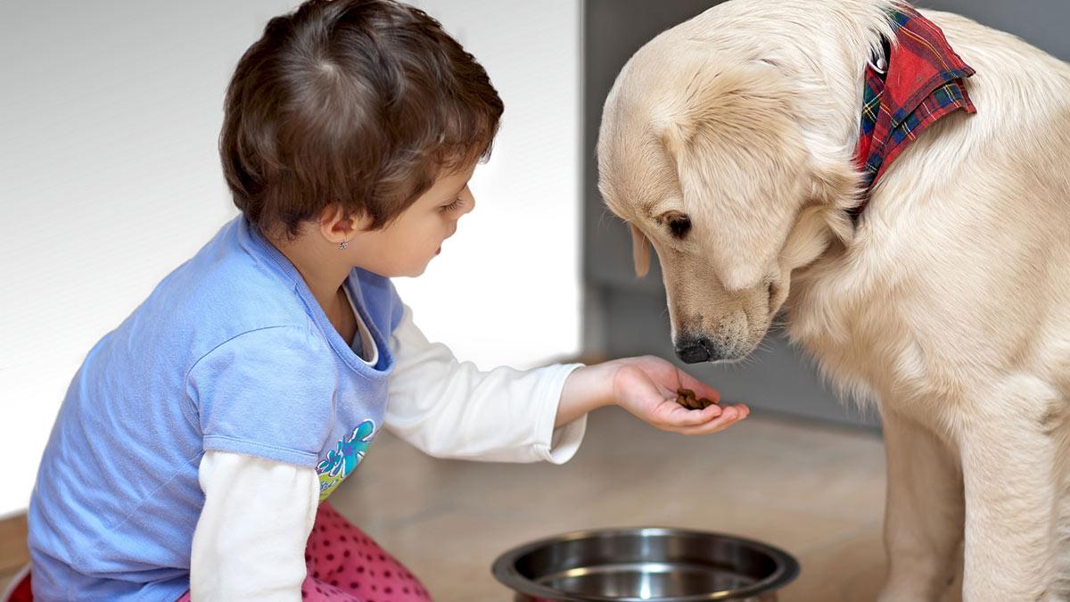 Преимущества воспитания детей вместе с домашними животными