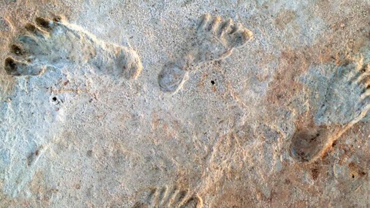 следы древних людей