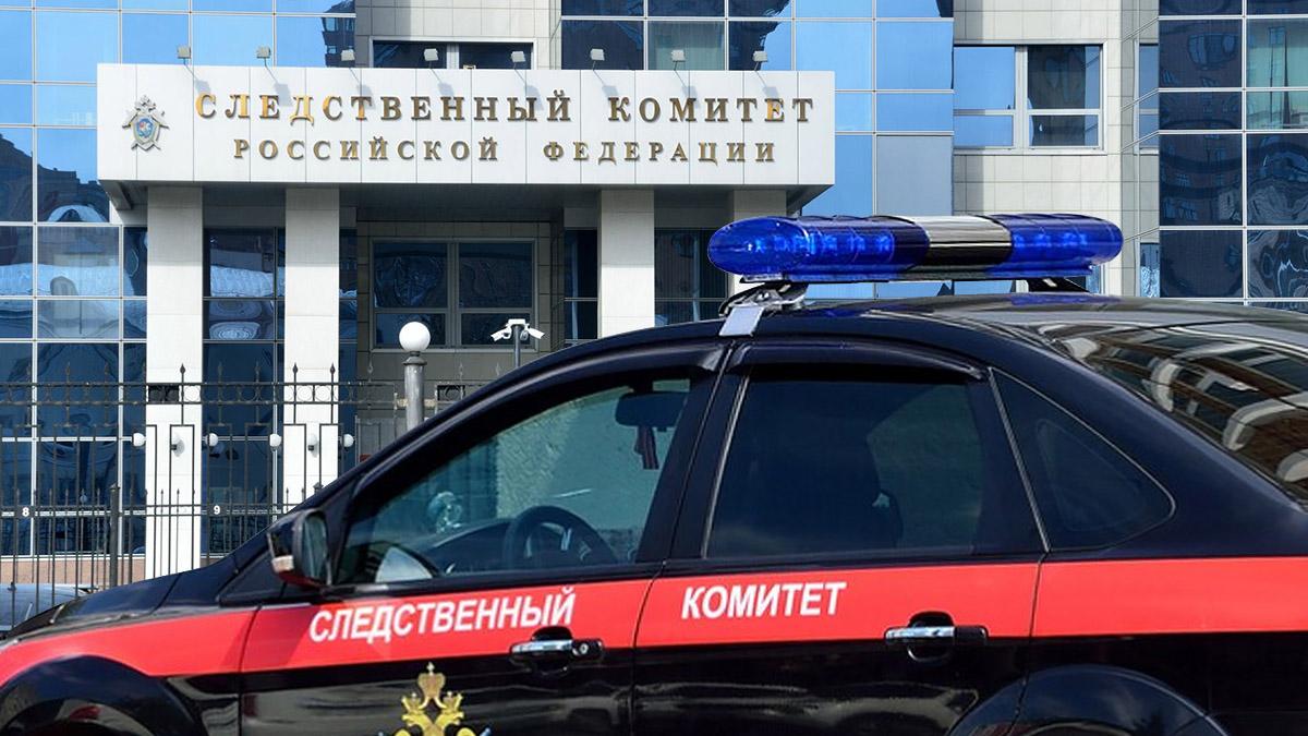 СК раскрыл подробности задержания участников избиения мужчины