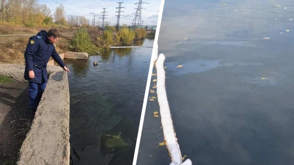 На реке Тёплой обнаружили масляные пятна