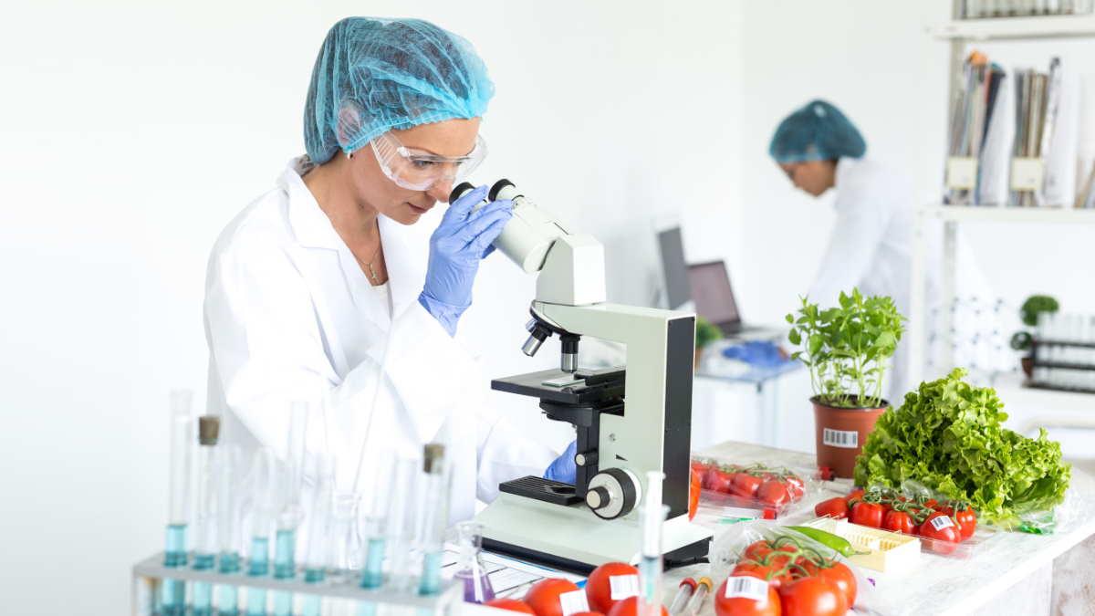 Лаборатория пищевых продуктов