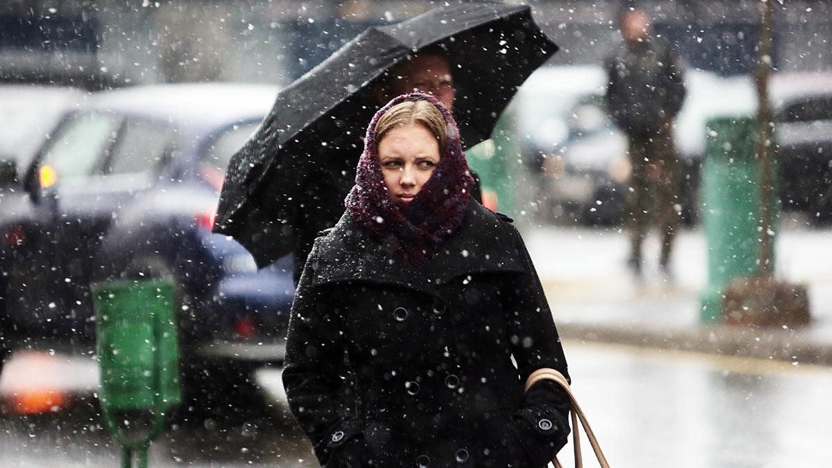 Москвичам рассказали, когда выпадет первый снег