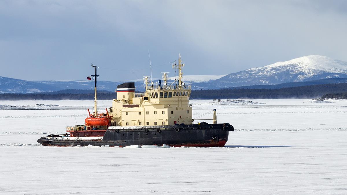 Для ВМФ России в Арктике построят пять ледоколов