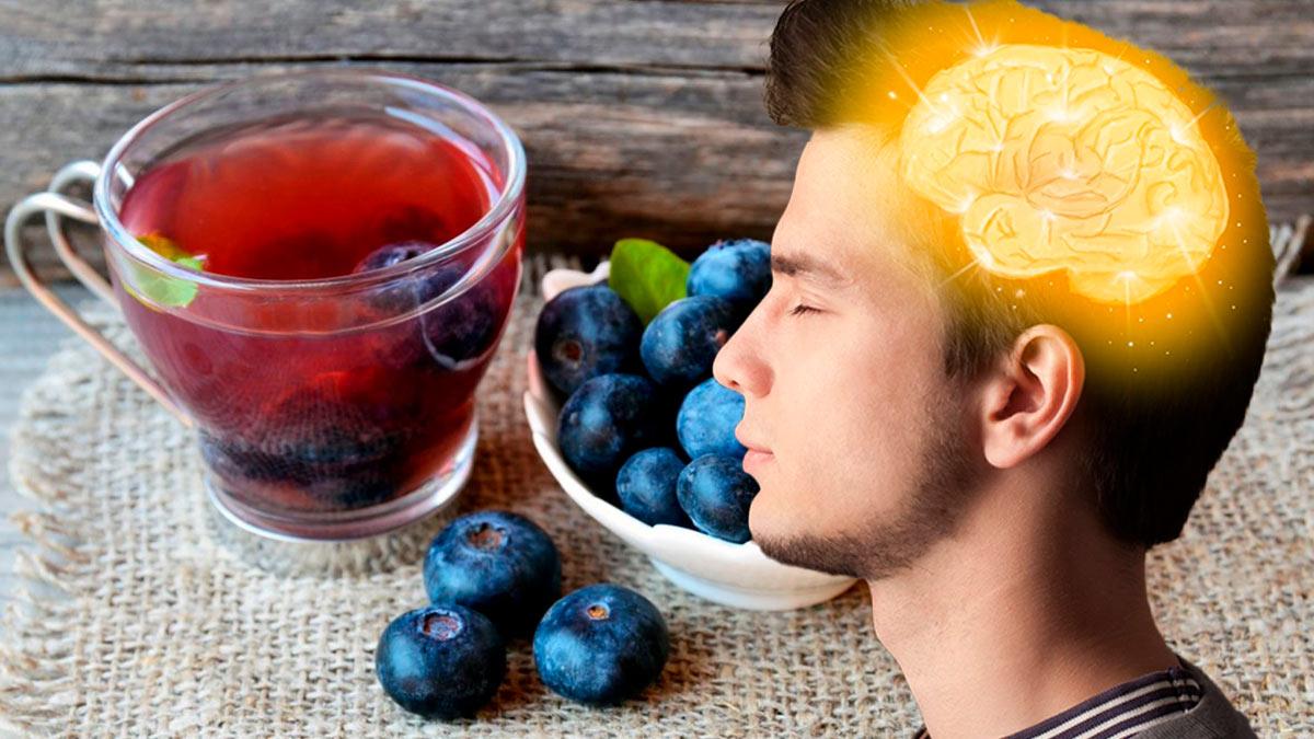 Для защиты мозга чай из голубики